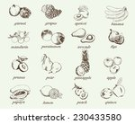 compilation of vector sketches... | Shutterstock .eps vector #230433580