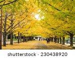 tokyo  japan   november 7 ... | Shutterstock . vector #230438920