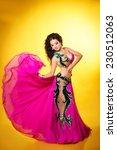 belly dancer woman beautiful... | Shutterstock . vector #230512063