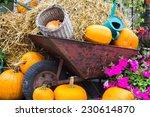 Old Wheelbarrow On The...