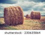 Field With Hay Bales In Cloudy...