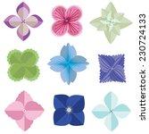 vector of various hydrangea... | Shutterstock .eps vector #230724133