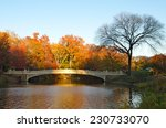 new york city   november 15 ... | Shutterstock . vector #230733070