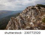 beautiful landscape from... | Shutterstock . vector #230772520