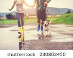 young couple walk dog in rain.... | Shutterstock . vector #230803450