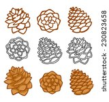 Vector Set With Pine Cones...