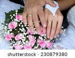 hands and rings on wedding... | Shutterstock . vector #230879380