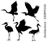 Heron Silhouette Set. Vector...