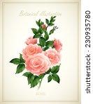 flower vector illustration | Shutterstock .eps vector #230935780