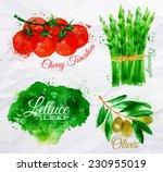 vegetables set drawn watercolor ... | Shutterstock .eps vector #230955019