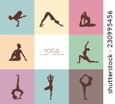 vector illustration of yoga... | Shutterstock .eps vector #230995456