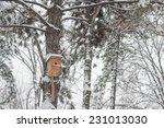 Nesting Box Under Snow During...