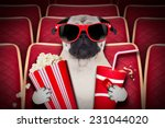 dog watching a movie in a... | Shutterstock . vector #231044020