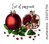 set of pomegranate.... | Shutterstock .eps vector #231072754
