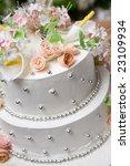 cake of bride and groom | Shutterstock . vector #23109934