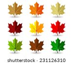 set of colorful maple leaves | Shutterstock .eps vector #231126310