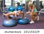 view of a female trainer... | Shutterstock . vector #231153229