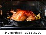 delicious baked chicken in oven ... | Shutterstock . vector #231166306