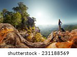 hiker with backpack standing on ... | Shutterstock . vector #231188569
