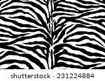 zebra pattern  vector | Shutterstock .eps vector #231224884