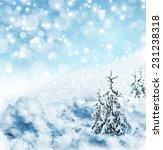 winter forest | Shutterstock . vector #231238318