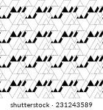 black and white geometric... | Shutterstock .eps vector #231243589