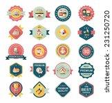 pet badge flat banner design...   Shutterstock .eps vector #231250720