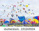 albuquerque  new mexico   oct... | Shutterstock . vector #231269026