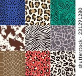 repeated animal skins print set | Shutterstock .eps vector #231291280