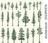 Set Of Stylized Pine...