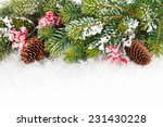 Christmas Fir Tree Branch With...