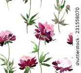 vector seamless pattern with... | Shutterstock .eps vector #231558070