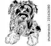 vector sweet dog miniature... | Shutterstock .eps vector #231626380
