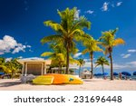 palm trees on the beach in key... | Shutterstock . vector #231696448
