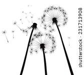 black vector dandelions | Shutterstock .eps vector #231713908