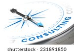 business consulting concept... | Shutterstock . vector #231891850
