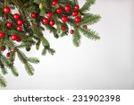 fir tree branch on a white... | Shutterstock . vector #231902398