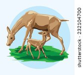 vector illustration of deer...