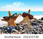 two starfish on the beach | Shutterstock . vector #232122730