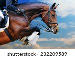 Stock photo bay horse in jumping show against blue sky 232209589