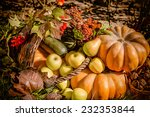 autumn nature concept. fall... | Shutterstock . vector #232353844