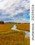 Marsh View Along The Coastal...
