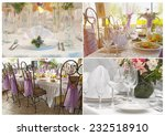 elegance table set collection | Shutterstock . vector #232518910
