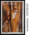 Small photo of GUYANA - CIRCA 1987: A stamp printed in Guyana shows Reed Warbler (Acrocephalus scirpaceus), circa 1987.