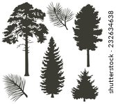 set of coniferous trees... | Shutterstock .eps vector #232634638