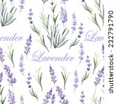watercolor lavender botanical... | Shutterstock .eps vector #232791790