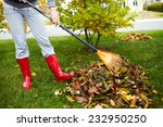 Woman in red boots raking fall...