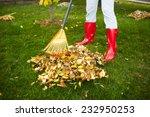 Woman In Red Boots Raking Fall...