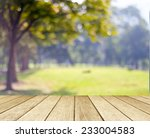 perspective wood with blur... | Shutterstock . vector #233004583