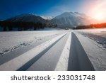 nordic ski   Shutterstock . vector #233031748